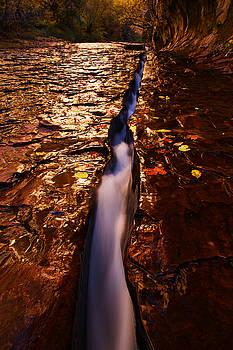 Vertical Flow by Dewey Farmer