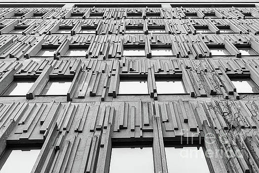 Vertical lines by Ty Agha