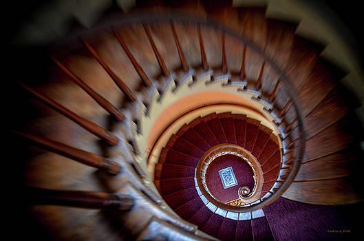 Vertigo by Andrea Platt
