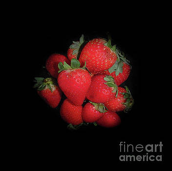 Very Berry Strawberries by Judy Hall-Folde