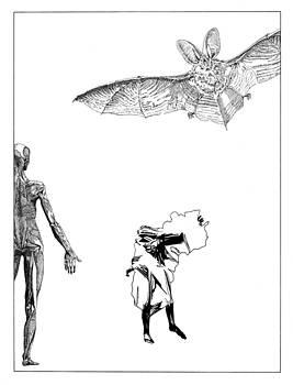 Stan  Magnan - Vesalius Bat Thing