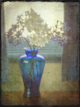 Vessel Of Light by Russ Brown