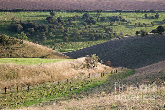 Vessey Pasture Dale by Gavin Dronfield