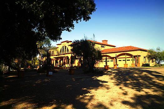 Joyce Dickens - Viaggio Winery Owners Estate 2