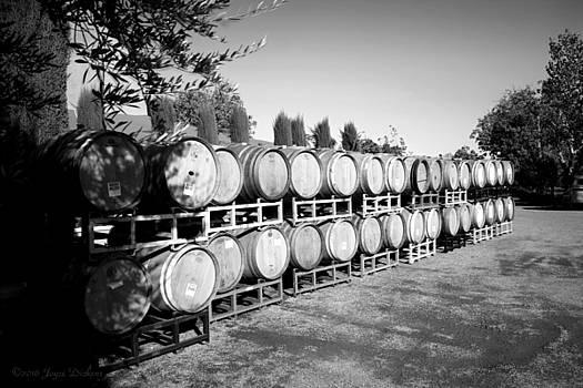 Joyce Dickens - Viaggio Winery Wine Barrels B and W