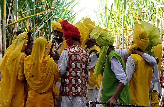 Bliss Of Art - Vibrant Colors of Punjab