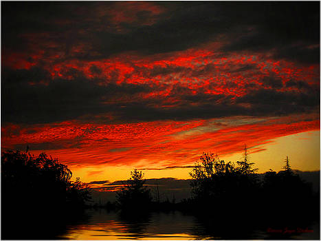 Joyce Dickens - Vibrant Glow Two