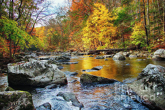 Vibrant Hues of Autumn by George Oze