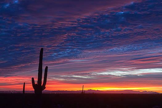 Vibrant Skies At Sunrise by Ryan Seek