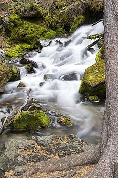 Vibrant waterfall landscape by Dana Moyer