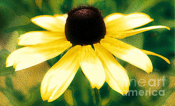 Vibrant Yellow Coneflower by Judy Palkimas