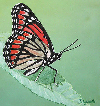 Viceroy by Diane Marcotte