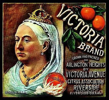 Peter Gumaer Ogden - Victoria Brand Sunkist Oranges