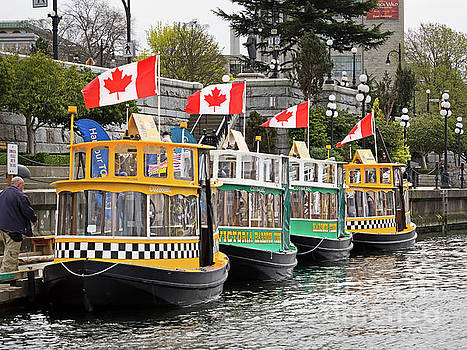 Victoria Harbour Ferries and Water Taxis, British Columbia, Cana by Louise Heusinkveld