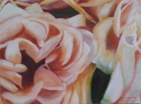 Victoria Rose by Selma Cooper