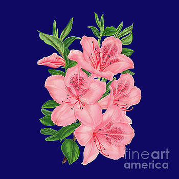 Victorian Pink Flowers on Navy by Leah McPhail