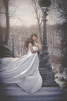 Victorian Twilight by Marcin and Dawid Witukiewicz