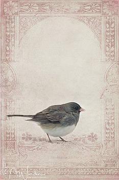 Victorian Winter Bird by Norma Warden