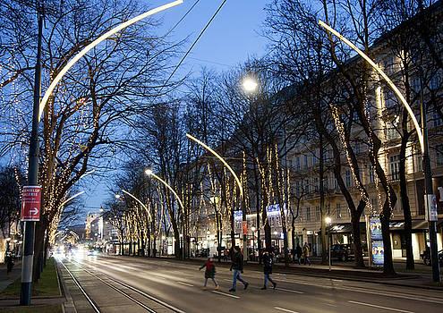 Ramunas Bruzas - Vienna At Night