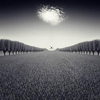 Viento by Luis  Beltran