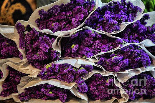 Chuck Kuhn - Vietnamese Flower Bunch