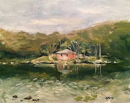 View Across Sebago Lake by Victor SOTO