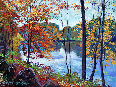 View Across The Lake by David Lloyd Glover