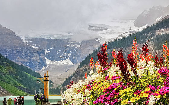 View at Lake Louise, Canada by Daniela Constantinescu
