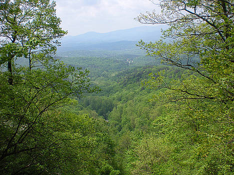 View from Amicalola Falls State Park by Linda Geiger