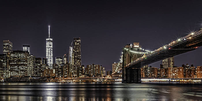 View from Brooklyn Bridge Park by Theodore Jones