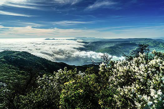 Santa Barbara View by Christopher Petro