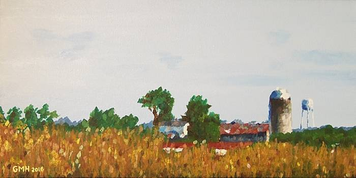 View from Grows Mill Road by Glenn Harden