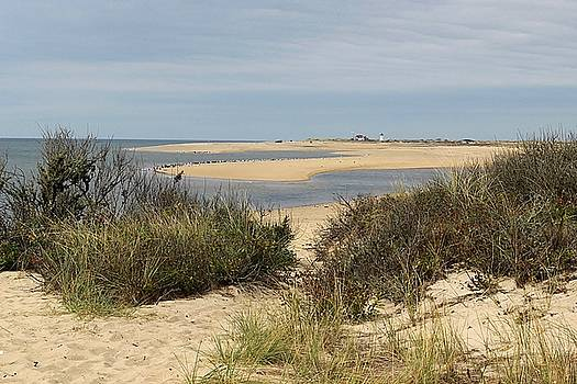 View from Herring Cove Beach by Linda Crockett