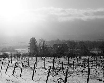 View from Jones Road,  February by Joseph Duba