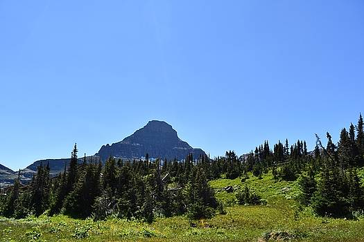 View from Logan's Pass by Dacia Doroff