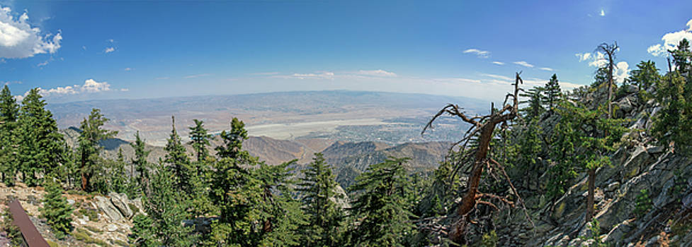 Ross G Strachan - View from Mount San Jacinto