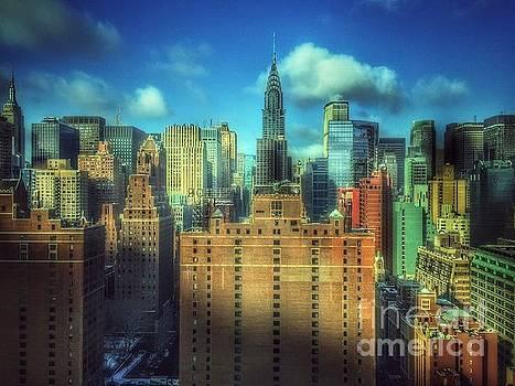 View From My Window - Magnificent Skyline of New York by Miriam Danar