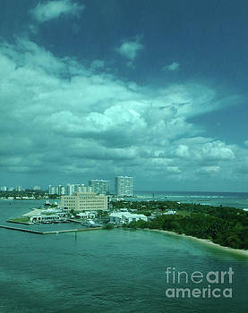 View from Port Everglades by Judy Hall-Folde