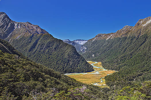 View from Routeburn Falls by Martin Wackenhut