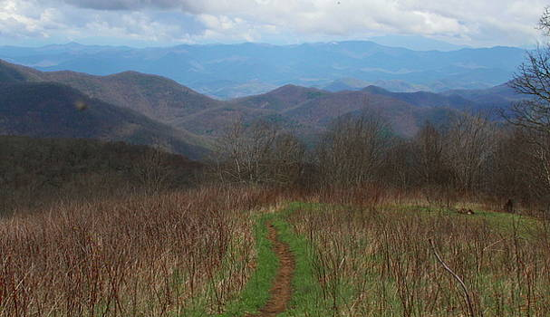 View from Silers Bald 2015a by Cathy Lindsey