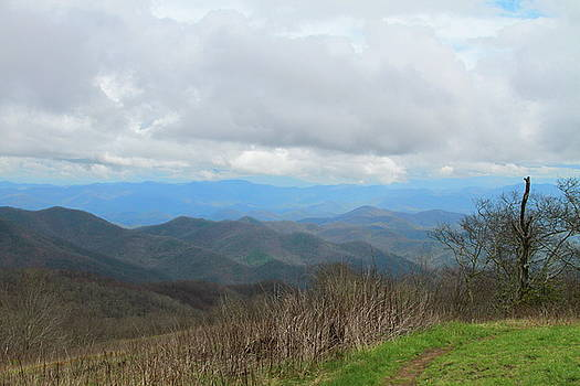 View From Silers Bald 2015d by Cathy Lindsey