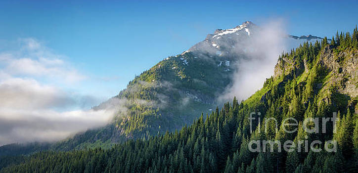 View from Stevens Canyon Road Mount Rainier National Park by Jerry Fornarotto