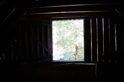 Angela Hansen - View from the Barn Loft