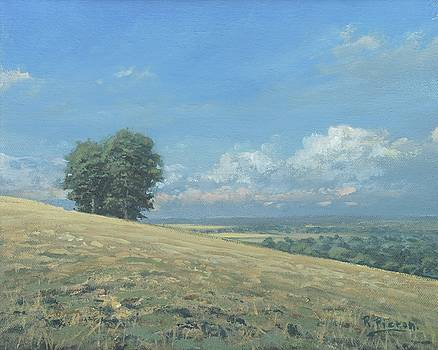 View from the Henley Road by Richard Picton