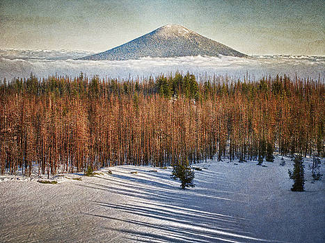 View from the Hill by Bill Johnson