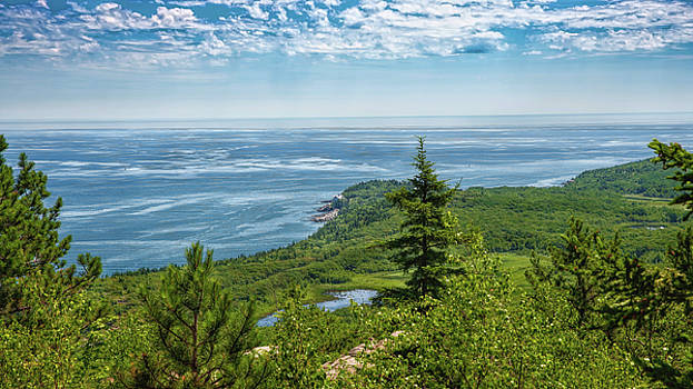 View from the Top by John M Bailey