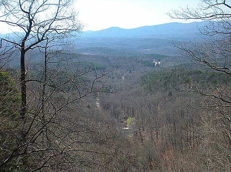 View from the top of Amicalola Falls by Linda Geiger
