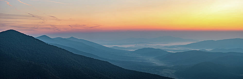 View from the Top by Steve Hammer