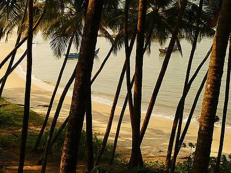View of a Beach by Sandeep Gangadharan