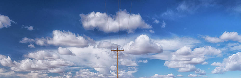 View of a Phone Pole by Gary Warnimont
